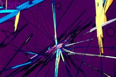 ビタミンDの結晶.jpg