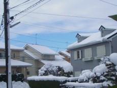 大雪の朝.JPG