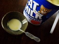 猫ミルク - コピー.JPG