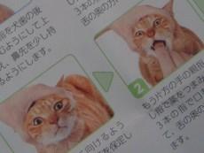 薬拡大 - コピー.JPG
